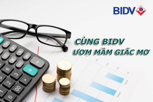 Hướng dẫn vay tiền BIDV trực tuyến